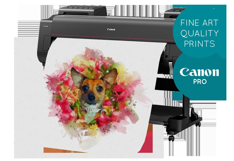 Canon Fine Art Printer