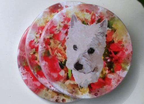 Pet Portrait Coasters