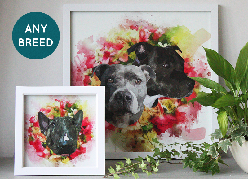 Pet Portrait Prints