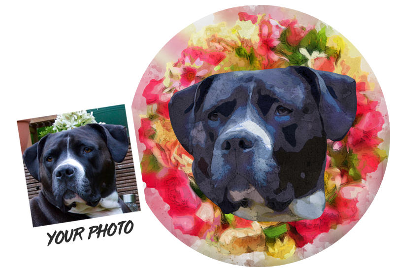 Personalised Coasters Featuring Your Pet
