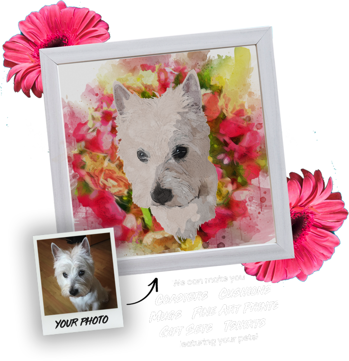 Bullie Pet Portraits: We can make you coasters, cushions, mugs, fine art prints, gift sets and t-shirts featuring your pet!